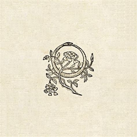 alchemy symbols tattoo 25 best ideas about ouroboros on