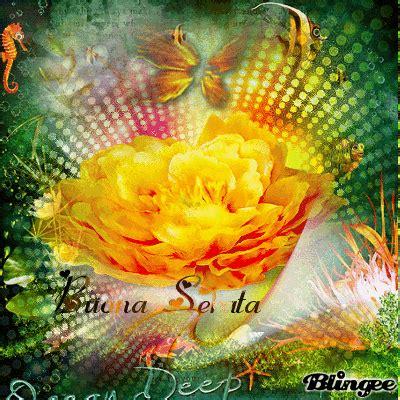 web co dei fiori immagine buona serata 129442131 blingee
