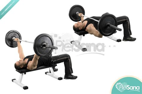 bar bell bench press barbell bench press o press de banca