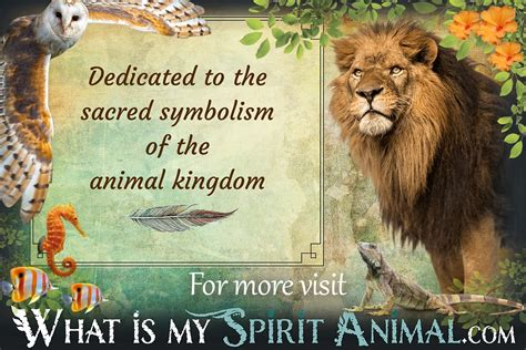 test animale guida animal symbolism meanings spirit totem power animal