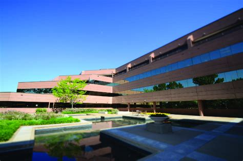 Csu Global Mba Accreditation by 20 Best Bachelors Of Data Science Programs