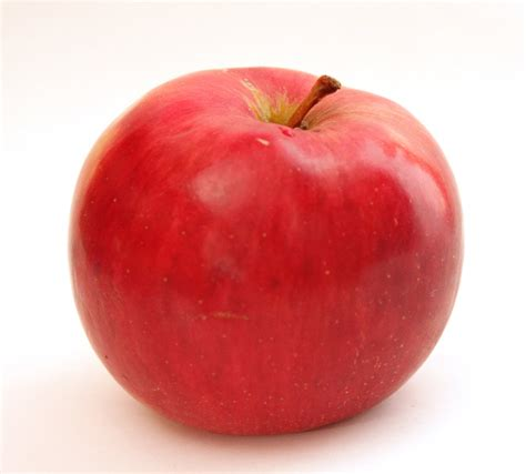 apple red red apple by manichysteriastock on deviantart