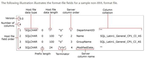 Format File In Bcp | sql server bcp format file date