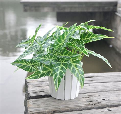 gorgeous home 1pc teal greenish online buy wholesale artificial bonsai trees from china