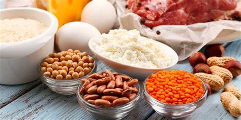 alimentos con alto contenido en proteina alimentos ricos en prote 237 nas