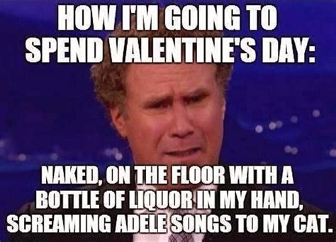 I Hate Valentines Day Meme - morably best will ferrell memes 12 photos