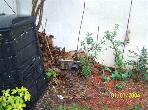 les h 233 rissons dans nos jardins 2012