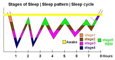 sleep pattern website sleep stages sleep cycles sleeping patterns