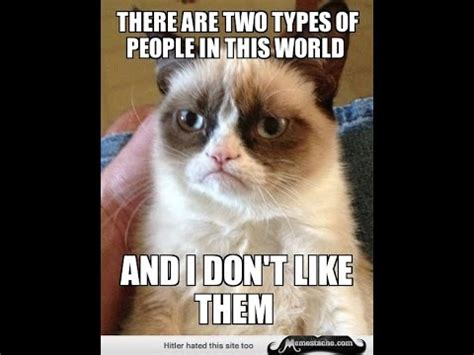 Grumpy Cat Meme Love - grumpy cat memes there are two types of picsmine
