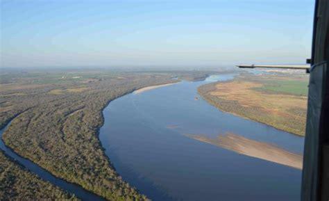 imagenes rio negro uruguay denuncian mortandad de vacas y ovejas que beben del r 237 o