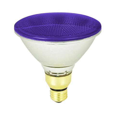 Led Light Bulbs Costco by Purple Flood Light Bulbs Bocawebcam
