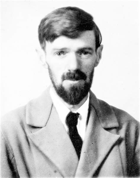 d h lawrence and the other side of walt whitman s empathy thoughts from d h lawrence