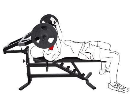 format gif wady i zalety przyrząd do treningu mięśni klatki piersiowej marbo ms