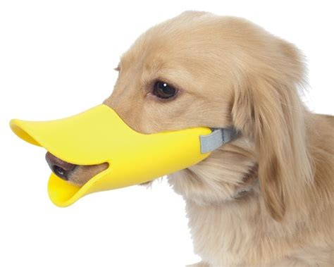 bills dogs japan trend shop oppo muzzle quack