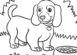coloring pages weenie dog dog coloring pages printables education com