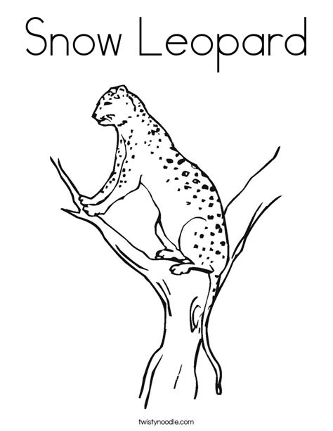 Snow Leopard Coloring Pages snow leopard coloring page twisty noodle