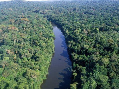desde dos rios timun 8448033663 natureza estudo vai lan 231 ar co2 na amaz 244 nia e analisar impacto sobre a floresta