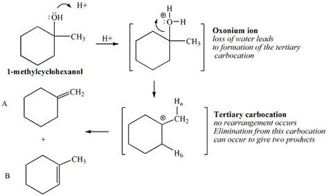hydration of cyclohexene lab cyclodes