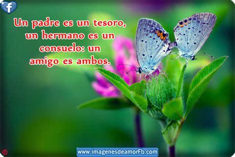 imagenes de mariposas lindas con frases imagenes de mariposas hermosas con frases imagui