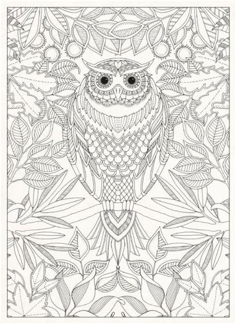 book for adults colouring books for adults paperblog