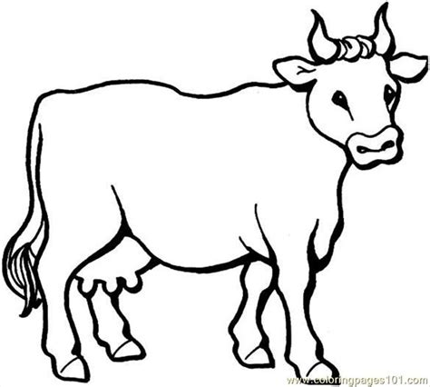 Cow 6 Coloring Page Coloring Pages Of A Cow