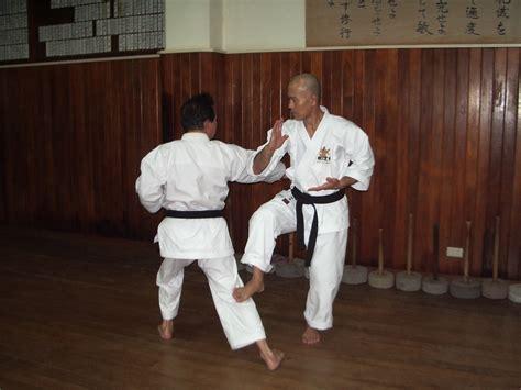 the kata and bunkai of goju ryu karate the essence of the heishu and kaishu kata books bunkai vs oyo seiikan kempo 169 誠意館拳法