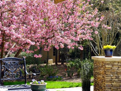 spring garden ideas spring garden decor house decor ideas