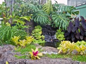 tropical landscaping pictures 187 design and ideas