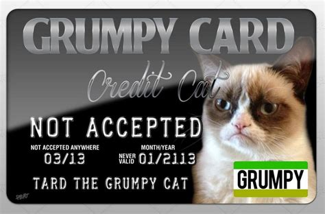 card grumpy cat grumpy cat credit card quot not accepted quot