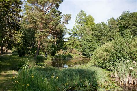 Garten Rostock botanischer garten universit 228 t rostock