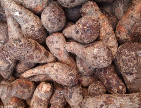 One Level Homes by Yams Reduce The Risk Of Constipation Colon Cancer The