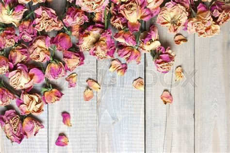 Ideas Home Decor by Pile Of Pink Dried Roses On Gray Rustic Wooden Background