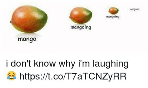 Mango Meme - search feisty memes on me me