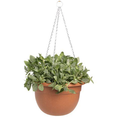 pk  watering  planter outdoor indoor hanging