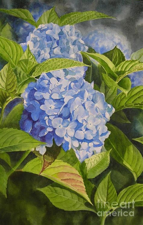 best 25 hydrangea painting ideas on paint flowers painting flowers and acrylic