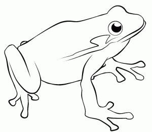 imagenes de pata de sapo para nios en gona de eva dibujos los mejores dibujos del mundo page 3