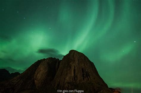 where to stay to see the northern lights in giro con fluppa where to stay and see the northern