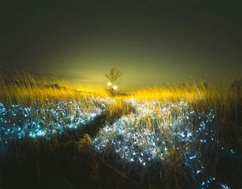 beautiful lighting lee eunyeol unveils beautiful led landscapes in starry