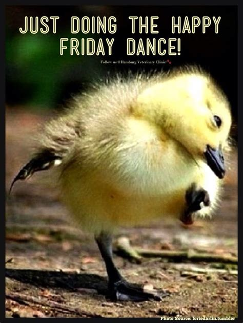 Happy Friday 3 by Best 25 Happy Friday Ideas On Friday