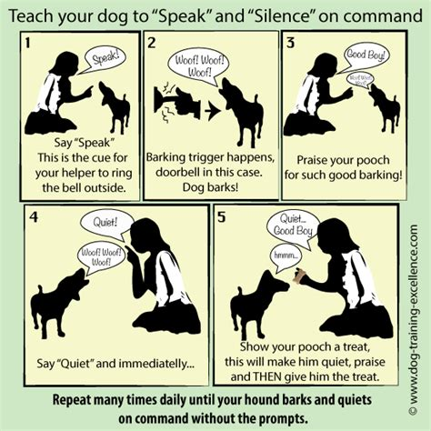 how to your to stop barking on command stop barking teach your hound the speak command