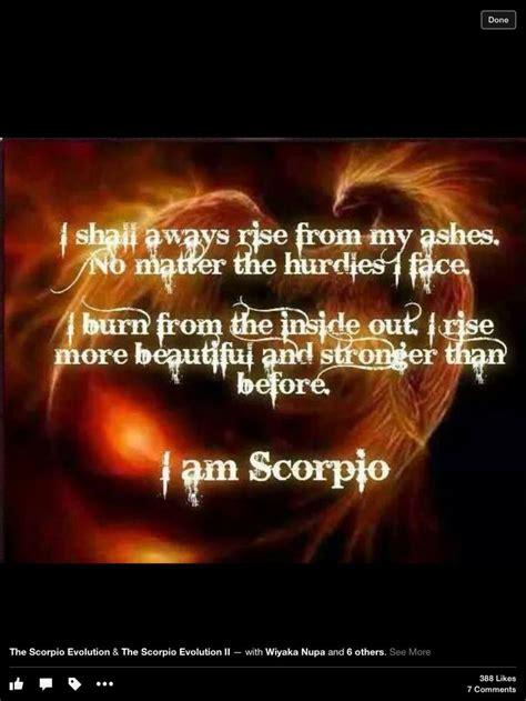 scorpio zodiac pinterest scorpio zodiac and scorpio