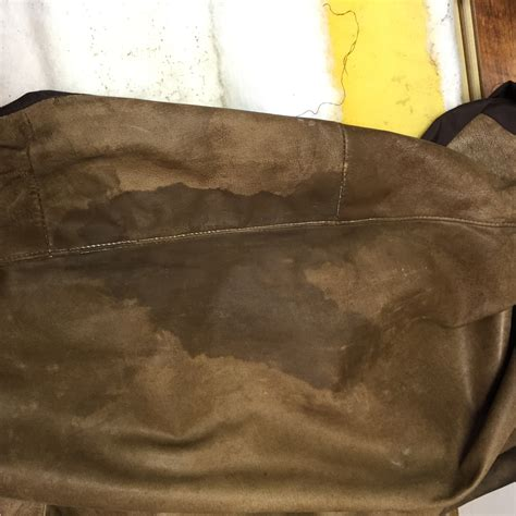 leather couch stain removal cat urine stain on nubuck leather couch