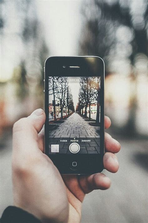 phone photography nature phone photography image 3855852 by marine21 on