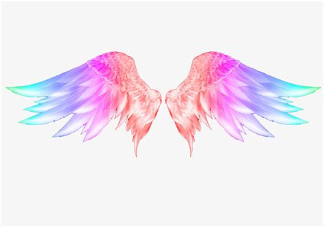 colored wings colorful wings wing feather painted png and