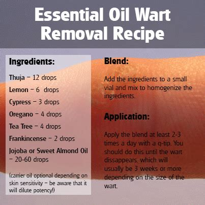 thuja for warts thuja essential wart removal blend essential benefits