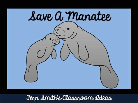 Brownies Manaree 16 best images about manatee science fair on