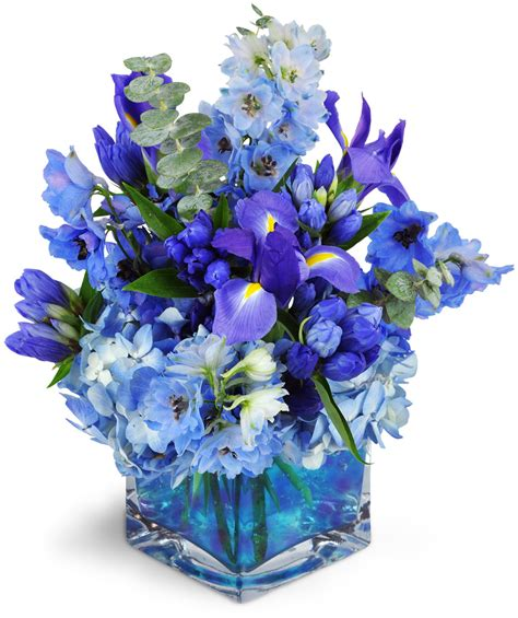 blue iris florist free flower delivery in houston stunning azure hues flow through this modern