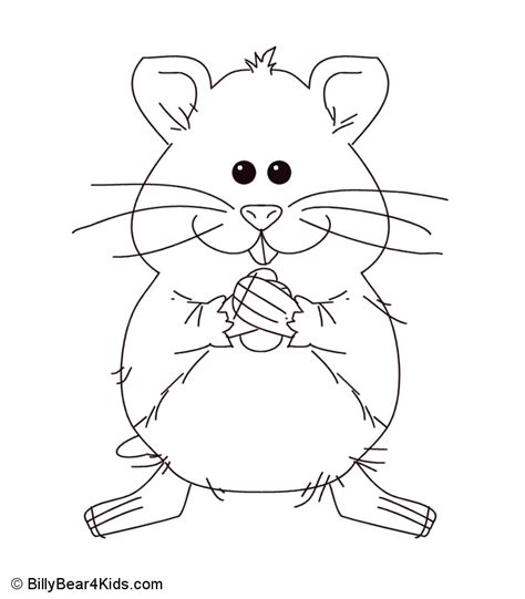 hamster coloring pages to print coloring pages