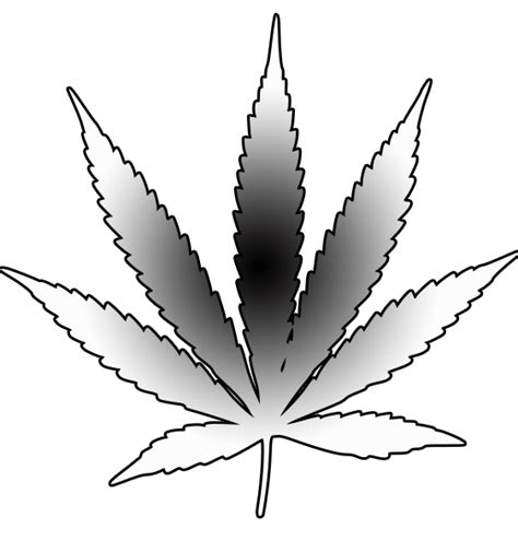 pot leaf template cannabis leaf free images at clker vector clip