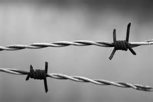 Free photo: Barbed Wire, Rust, Rusty, Wire - Free Image on Pixabay ... Barbed